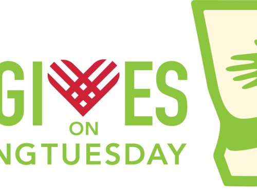 Georgia Joins #GivingTuesday This Year As GAgives