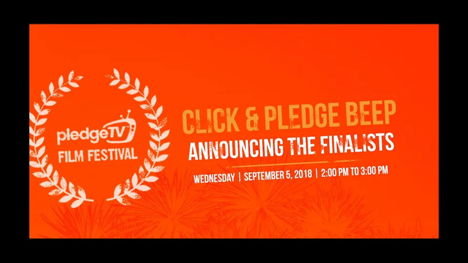 BeeP On Facebook Live: Announcing the pledgeTV Film Festival Finalists