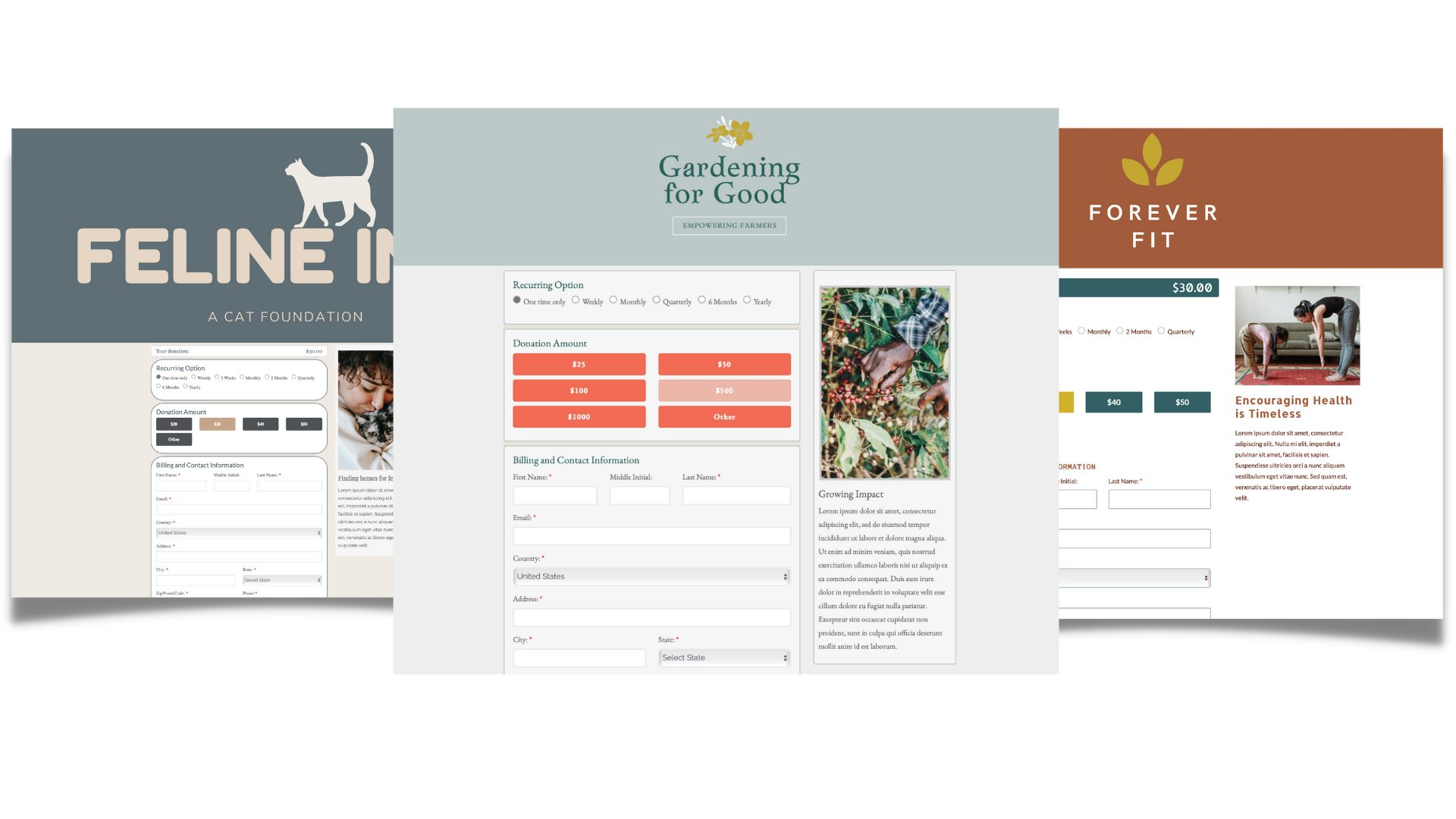 Customize donation forms for nonprofits